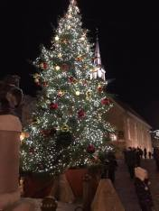 Christmas tree in main square.